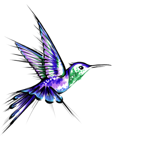 Hummingbird Tattoos Png -