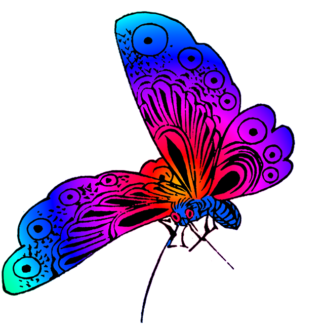 Rainbow Butterfly Png Border -