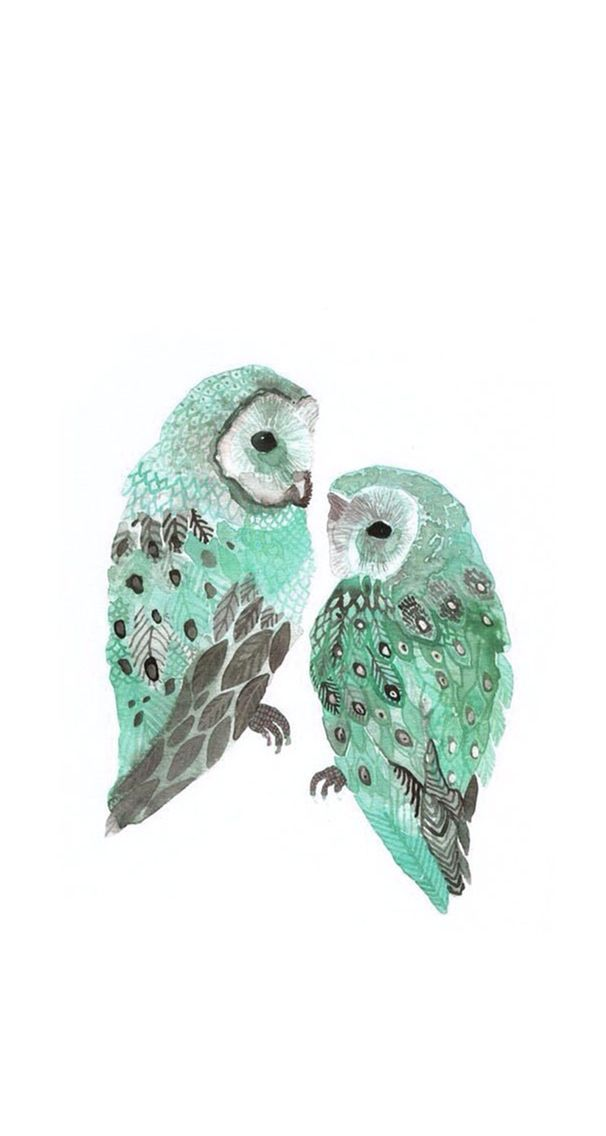 1000 Ideas About Owl Wallpaper Iphone O 2635229 Png Images Pngio