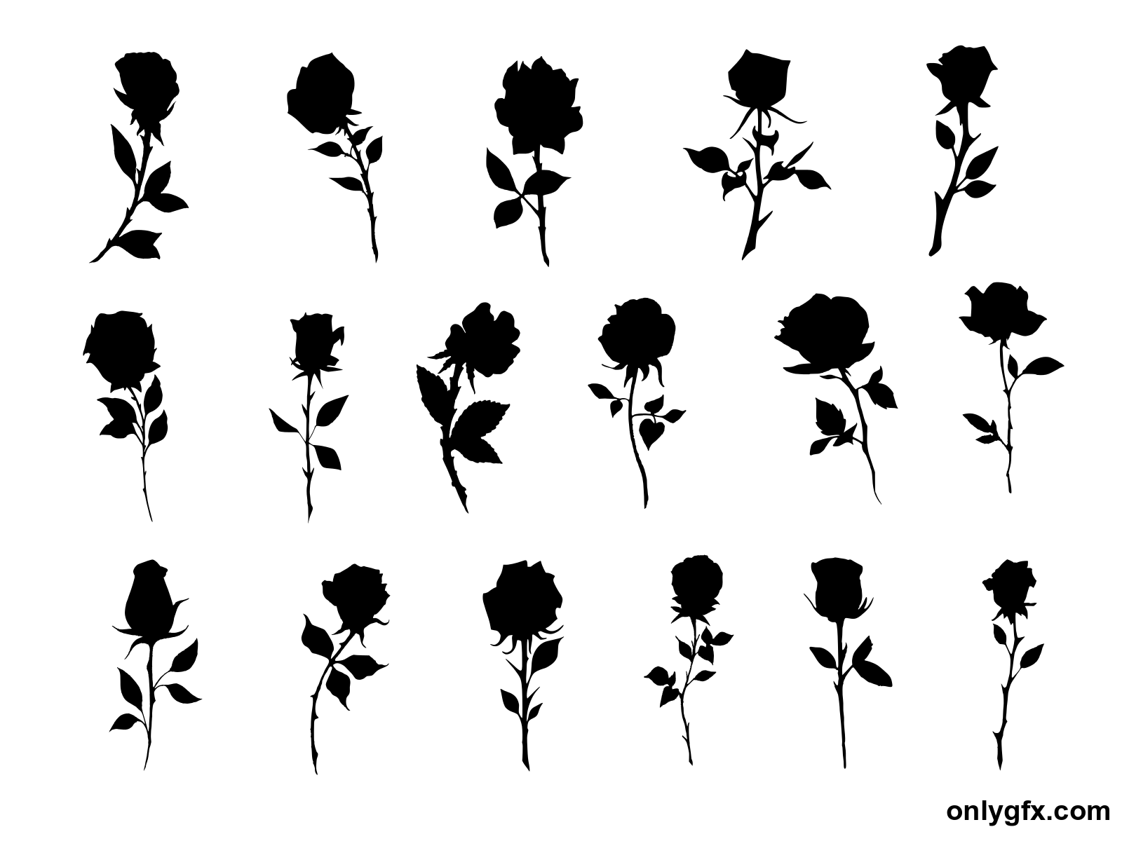 Rose Silhouette Png - 17 Rose Silhouette (PNG Transparent) | OnlyGFX.com