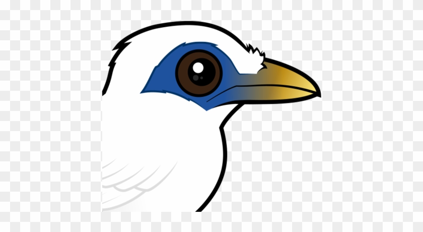 Bali Myna Png - 440 X 440 1 - Bali Myna - Free Transparent PNG Clipart Images Download