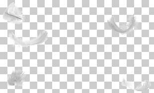 Down Feather Png - 463 Down feather PNG cliparts for free download | UIHere