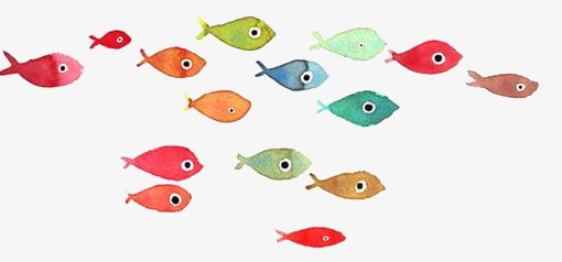 Group Of Fish Png & Free Group Of Fish.png Transparent ...
