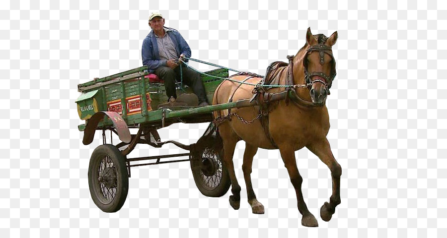Horse And Buggy Png Free - Adobe Photoshop Elements Rendering Adobe Systems Horse and buggy ...