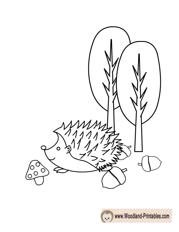 Baby Hedgehog Coloring Page - These coloring pages are fun and ... | 792x612