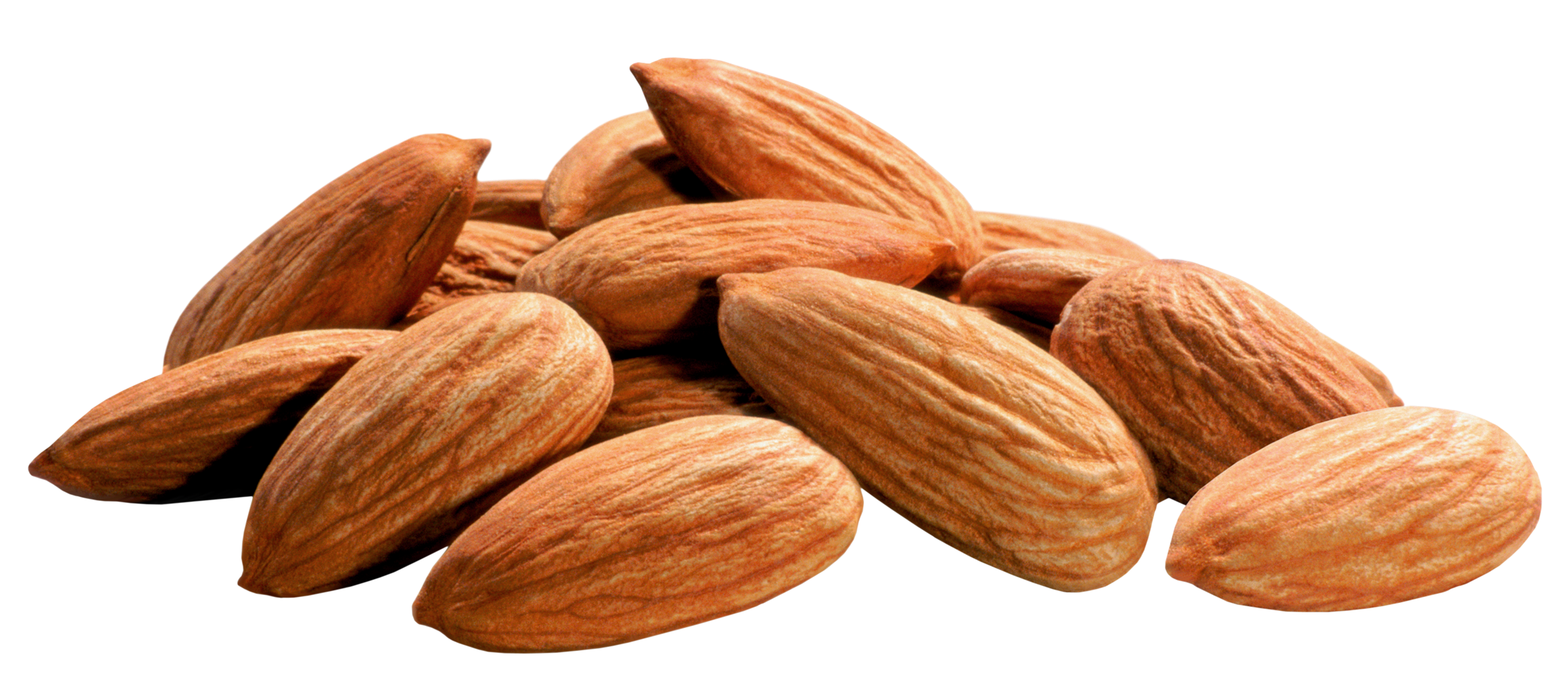 Almond Png - Almond PNG Image