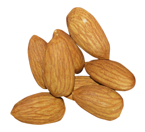 Almond Png - Almond PNG Transparent Image