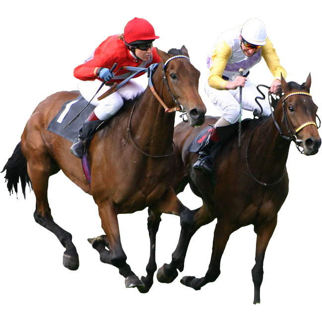 Amazing Horse Racing Game Online Free Cl 55575 Png Images Pngio