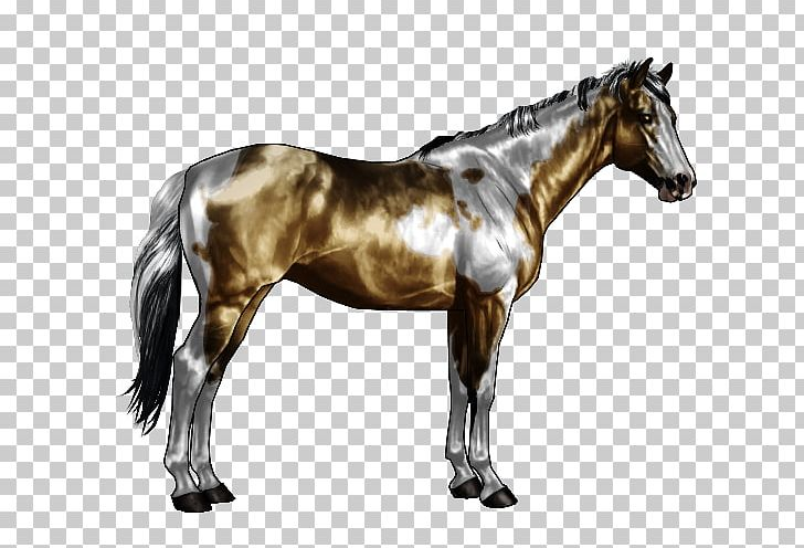 Tobiano Png - American Paint Horse Appaloosa Overo Roan Tobiano PNG, Clipart ...