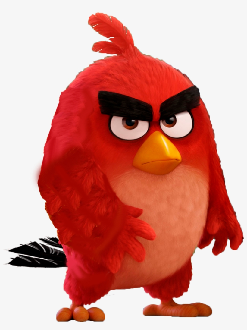 Angry Birds Wallpaper Png Free Angry Birds Wallpaper Png Transparent Images 100744 Pngio