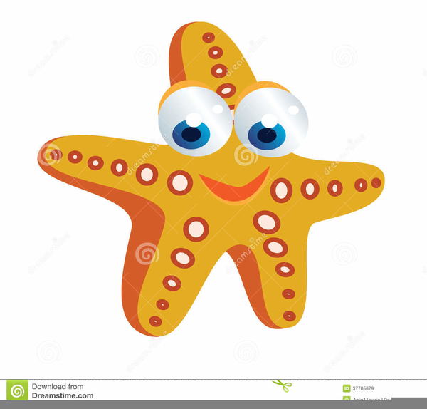 Animated Starfish Png - Animated Starfish Clipart | Free Images at PNGio - vector clip ...