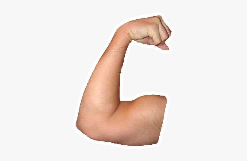 Muscle Arms Png - Arm Muscle Png - Transparent Arms Transparent PNG - 345x461 - Free ...
