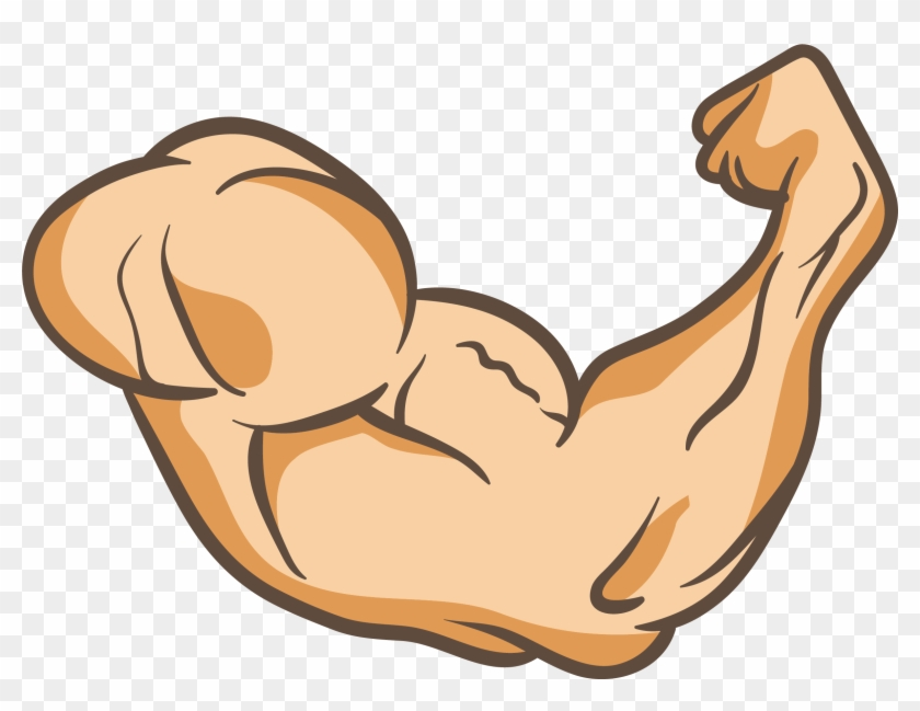 Muscle Arms Png - Arms Thumb Muscle Clip Art A Powerful Arm 2359 1711 - Muscle Arm ...