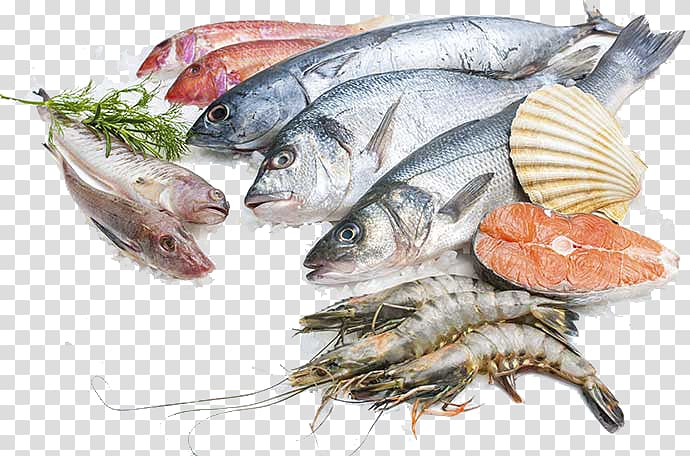 Fish And Seafood Png - Assorted edible fishes, Sustainable seafood Fish processing Salmon ...