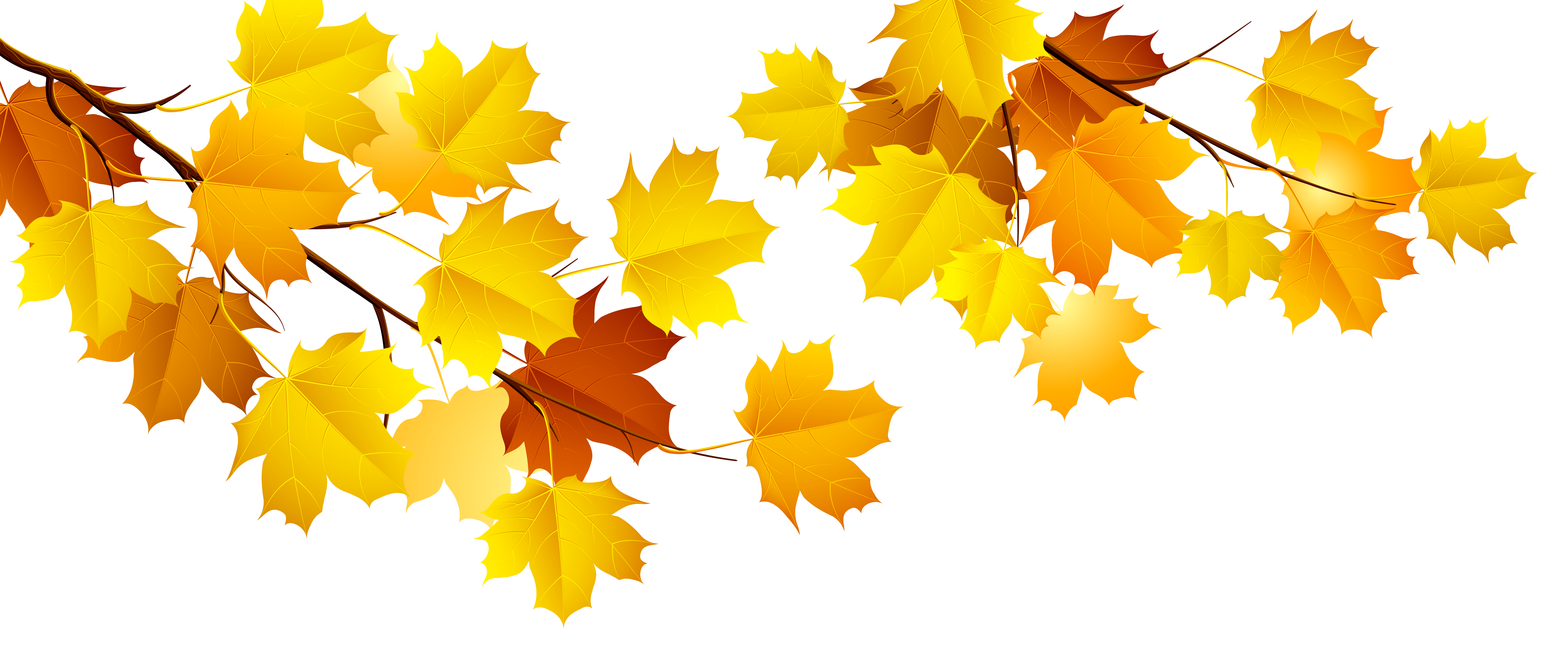 Fall Images Png - Autumn Branch PNG Clipart   Gallery Yopriceville - High-Quality ...