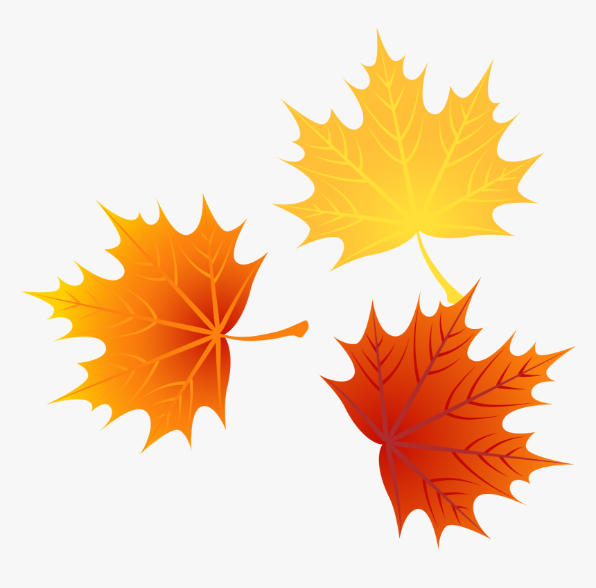 Cartoon Fall Leaves Png Free Cartoon Fall Leaves Png Transparent Images 139457 Pngio