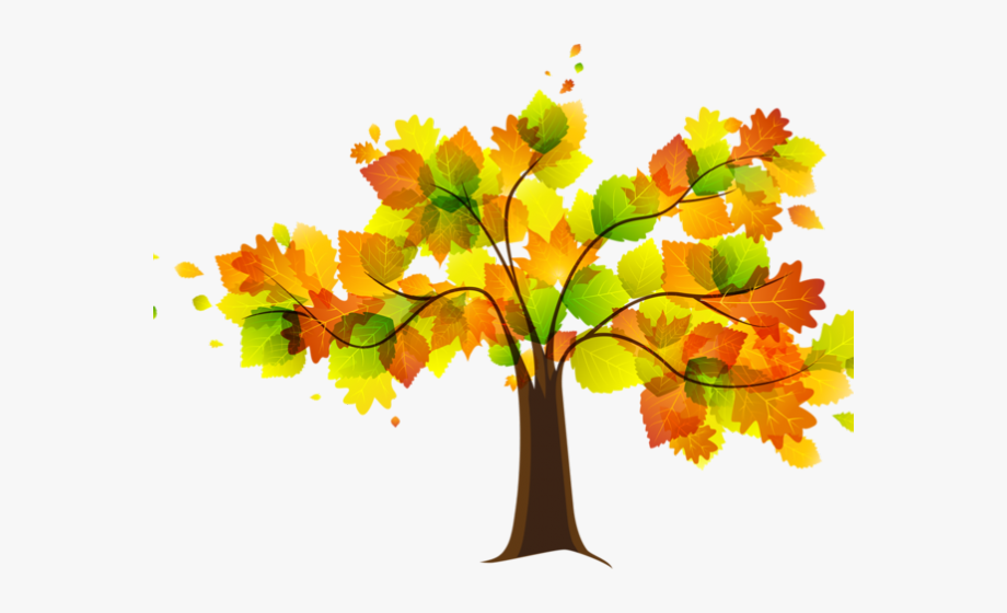 Cartoon Tree Autumn / So, i'll be drawing autumn trees with watercolors today.