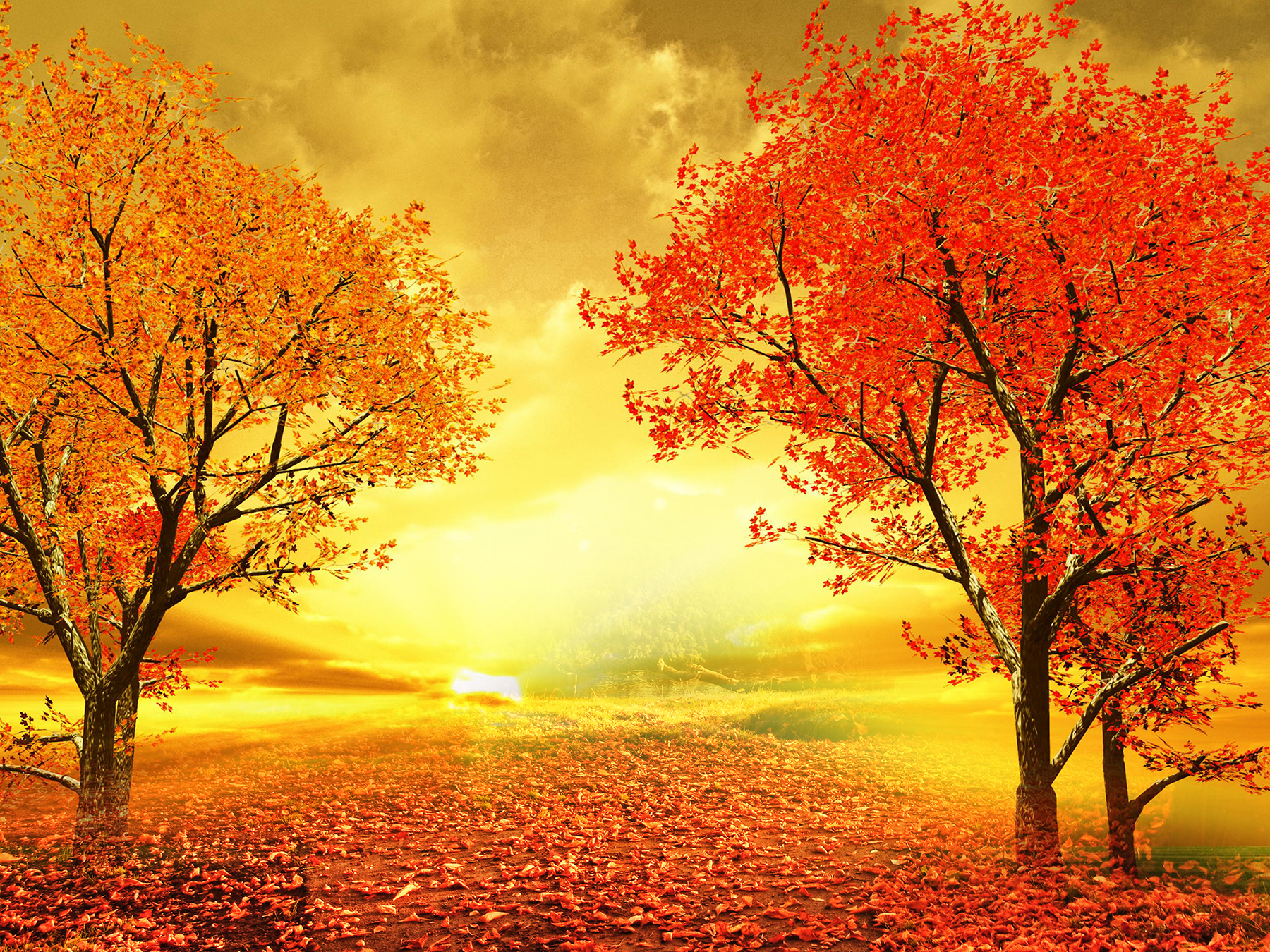 Autumn Sunsets Png Backgrounds - Autumn Sunset Road Wallpaper and Background Image | 1800x1350 | ID ...