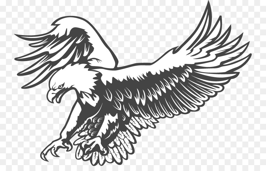 Bald Eagle Clip Art Black And White Vect #463350 - PNG