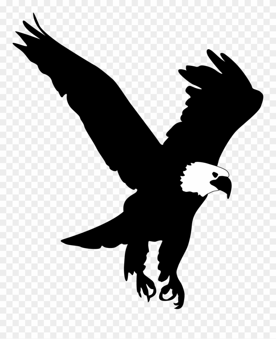 Bald Eagle Silhouette Png Free Bald Eagle Silhouette Png Transparent Images 132048 Pngio Free for commercial use no attribution required high quality images. bald eagle silhouette png free bald