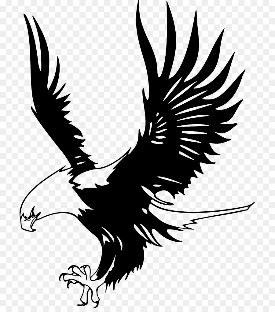 Hawk Png Black And White - Bald Eagle Just Eagles Black-and-white hawk-eagle Clip art ...