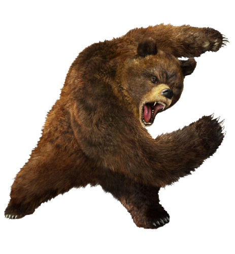 Bears Png Without Background - Bear PNG 5