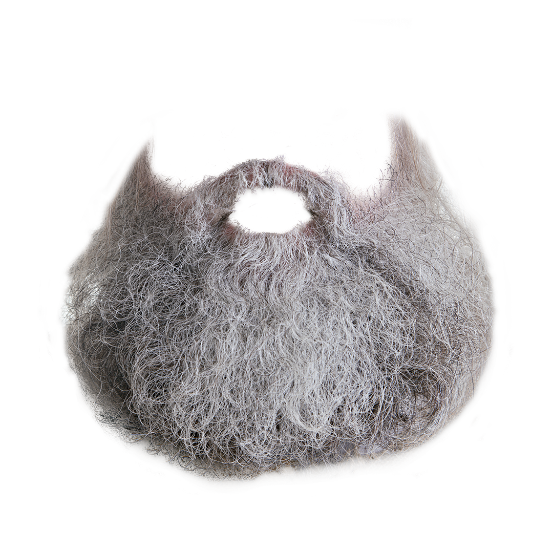 Gray Beard Png - Beard Png (Good Galleries) #856 - Free Icons and PNG Backgrounds