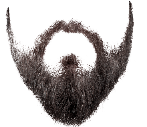 Mustache And Beard Png - Beard PNG images free download