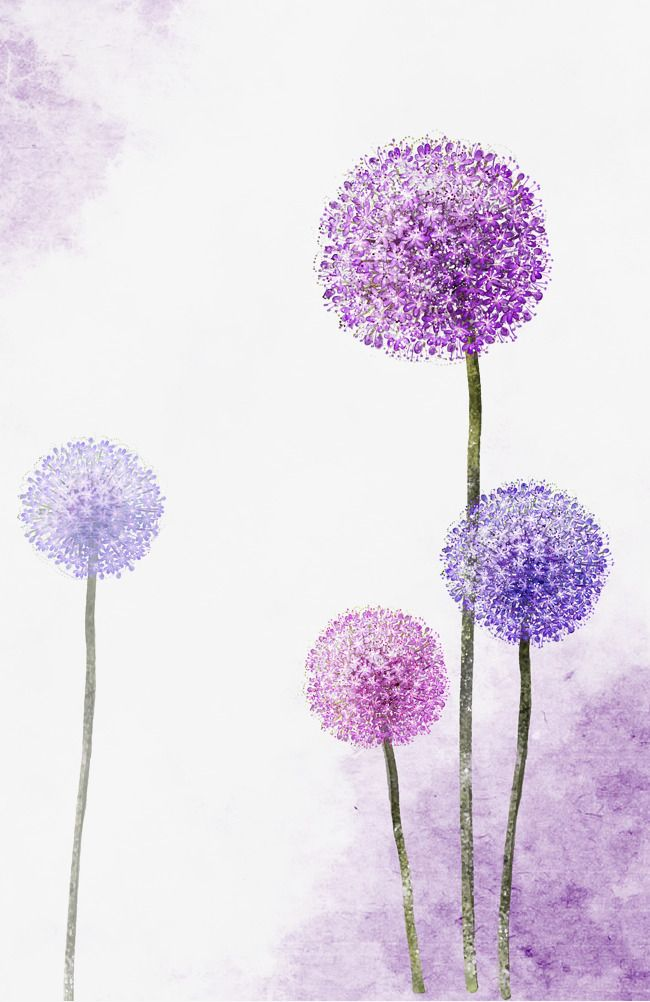 Hand Painted Wallpaper Png - Beautiful Hand Painted Purple Dandelion, Purple, Beautiful, Hand ...