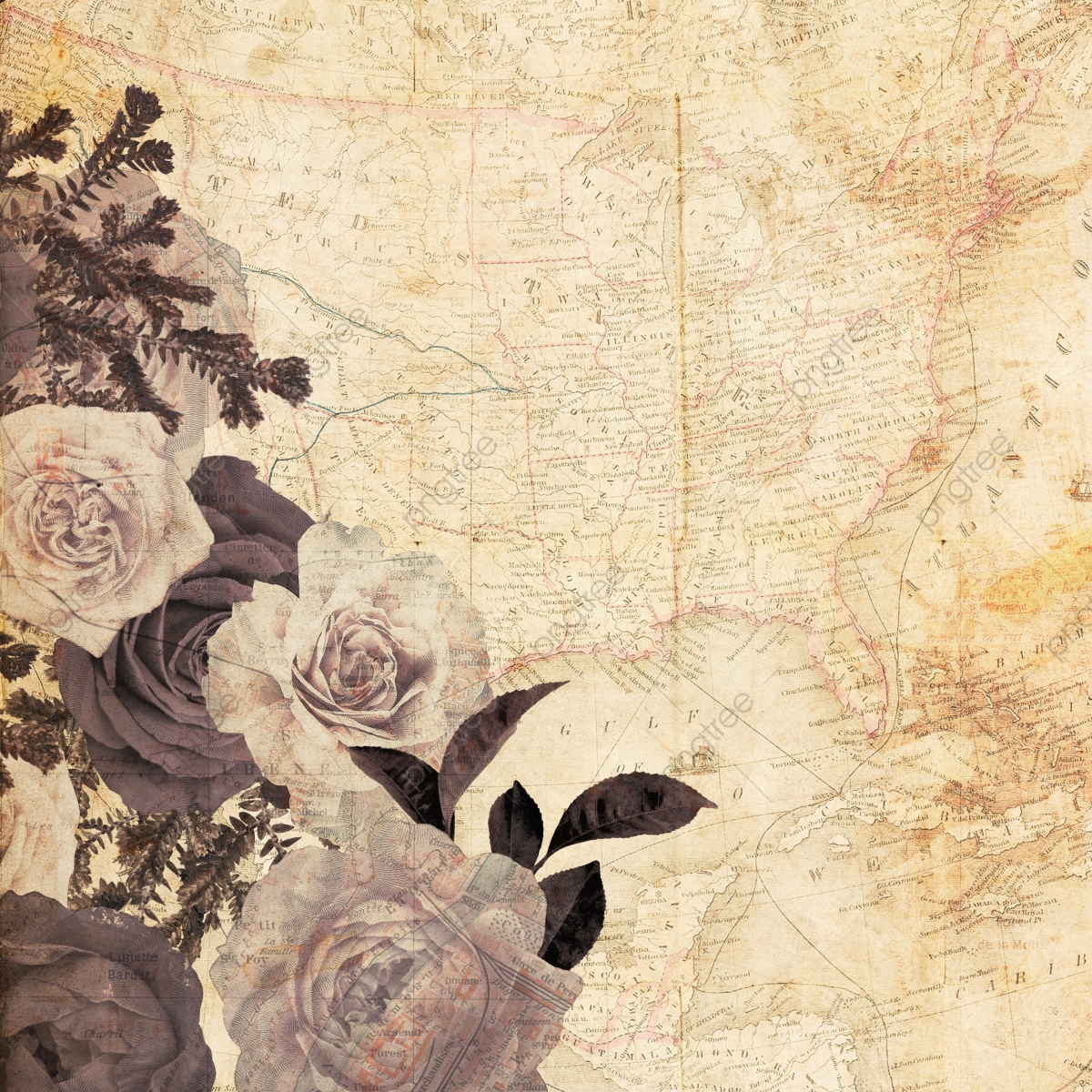 Beautiful Vintage Floral Background Bac 931532 Png Images Pngio