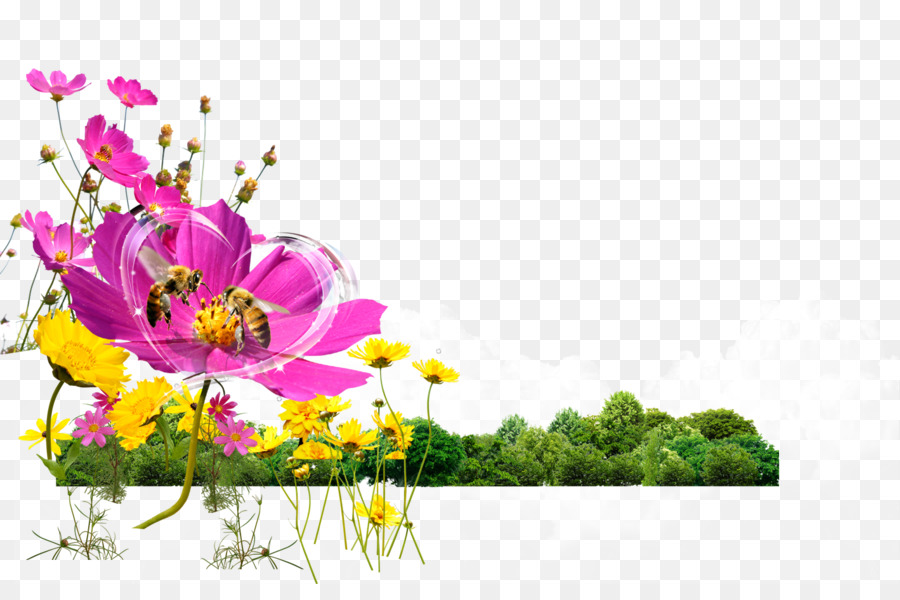 Flower And Bee Png - Bee Flower Gratis Computer file - Flowers flowers Bee