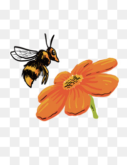 Flower And Bee Png - bees and flowers, Flowers, Bee, Honey PNG and Vector