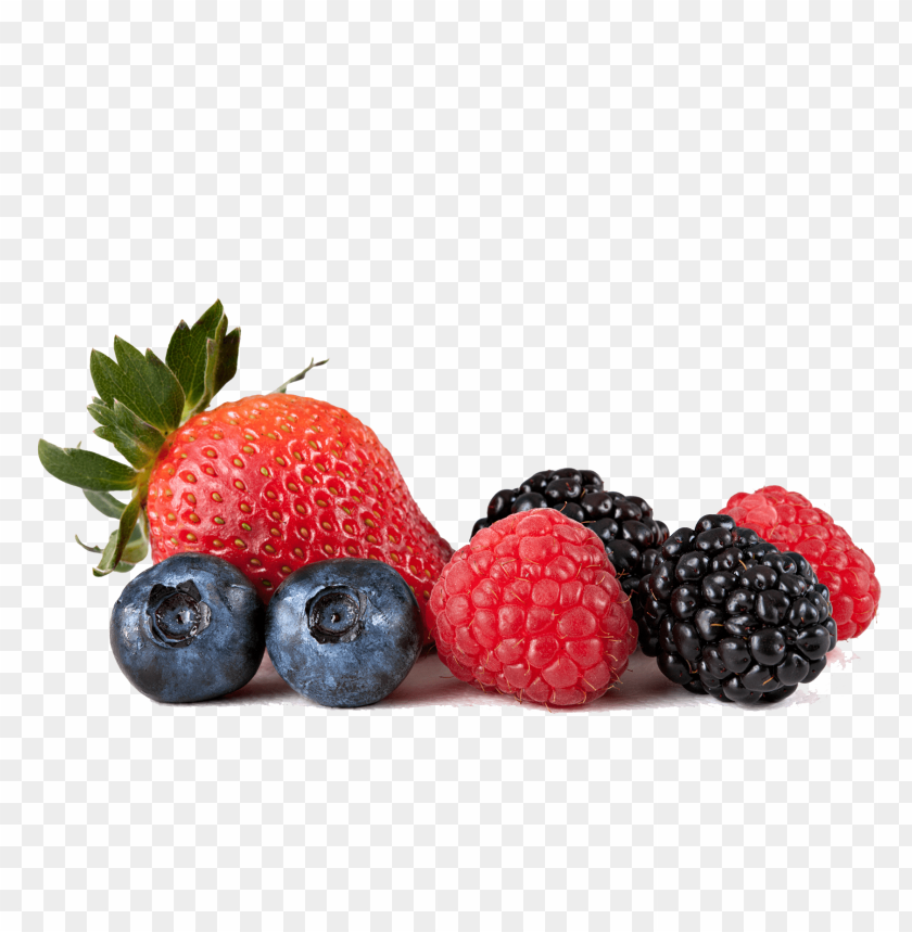 Berry Png - berries png - Free PNG Images   TOPpng