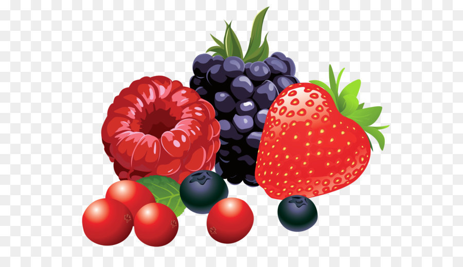 Berry Png - Berry Fruit Clip art - Forest Fruits PNG Vector Clipart Image png ...
