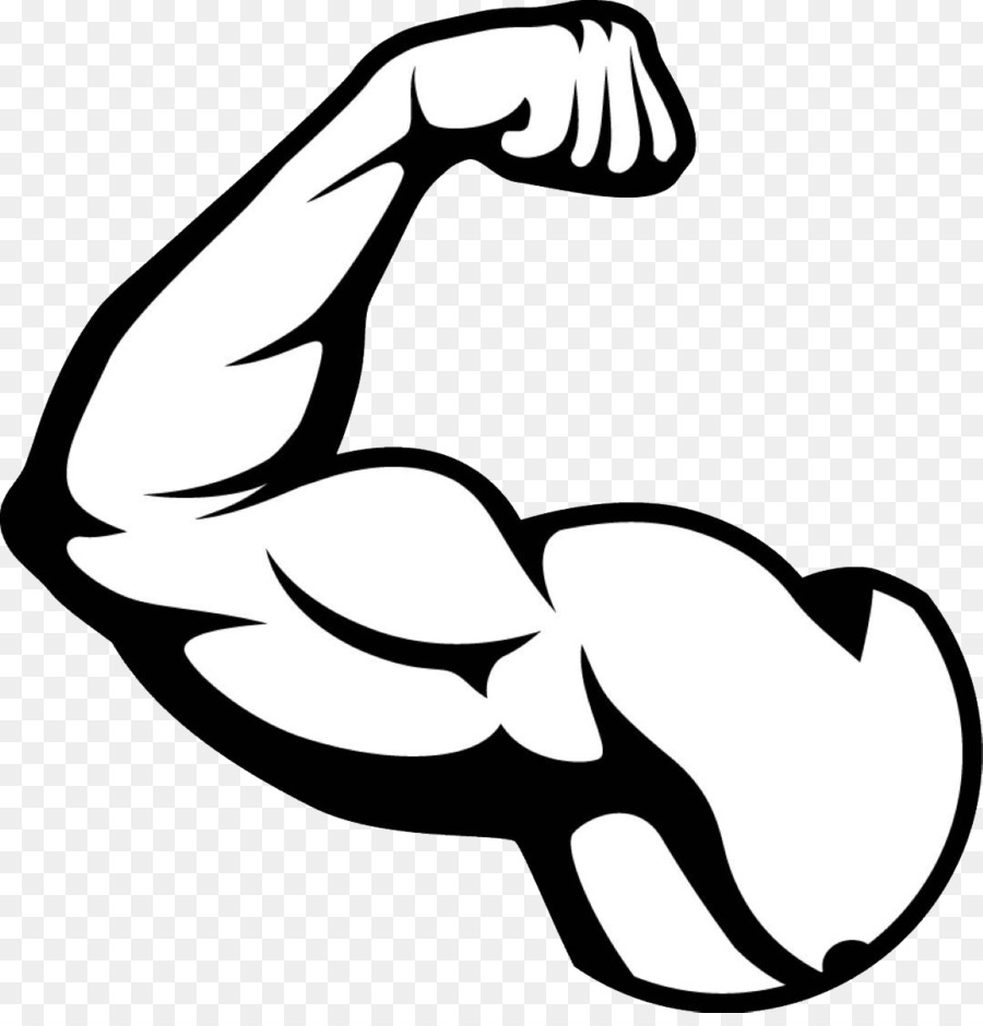 Muscle Arms Png - Biceps Arm Muscle - muscle png download - 1080*1113 - Free ...