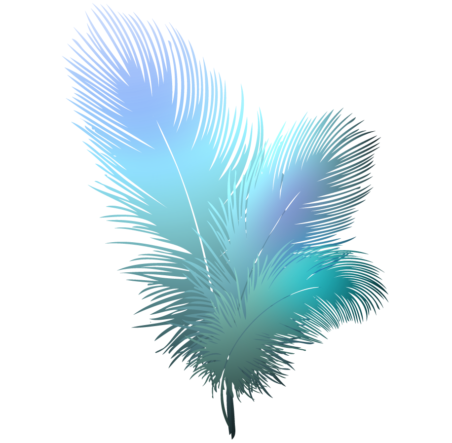 colorful feather png no background free colorful feather no background png transparent images 26554 pngio colorful feather png no background