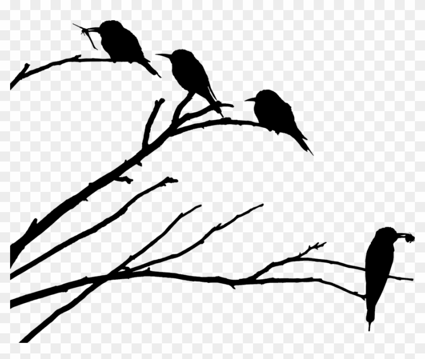 Bird On Branch Png - Bird On Branch, Bee Eater, Silhouette Images, Bee Silhouette ...