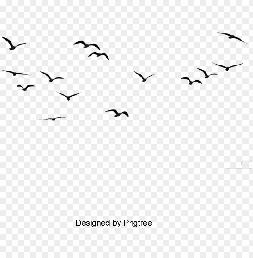 Sky Bird Png - birds, animal, birds clipart png image and clipart - birds flying ...