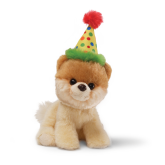 Boo The Dog Png - Birthday Dog PNG Transparent Birthday Dog.PNG Images. | PlusPNG