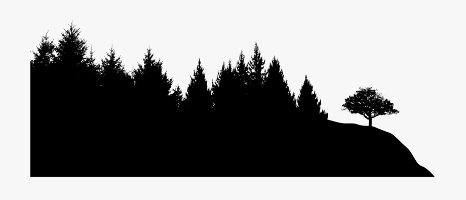 Forest Silhouette Transparent Background - Black Sileohuette Painting Tree Silhouette Png Transparent ...