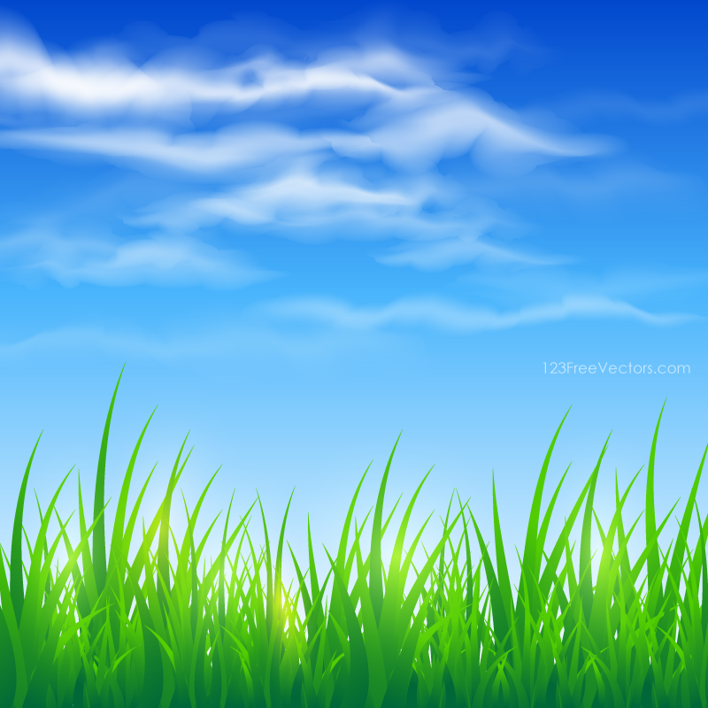 blue sky and green grass background na 1135391 png images pngio blue sky and green grass background