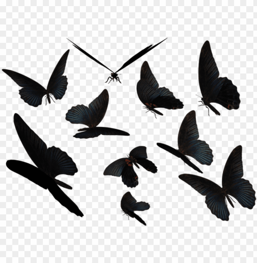 Blue Swallow Png - blue swallow tail butterflies by madetobeunique on - butterfly ...
