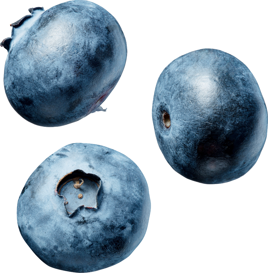 Blueberry Png - Blueberry PNG Image - PurePNG   Free transparent CC0 PNG Image Library