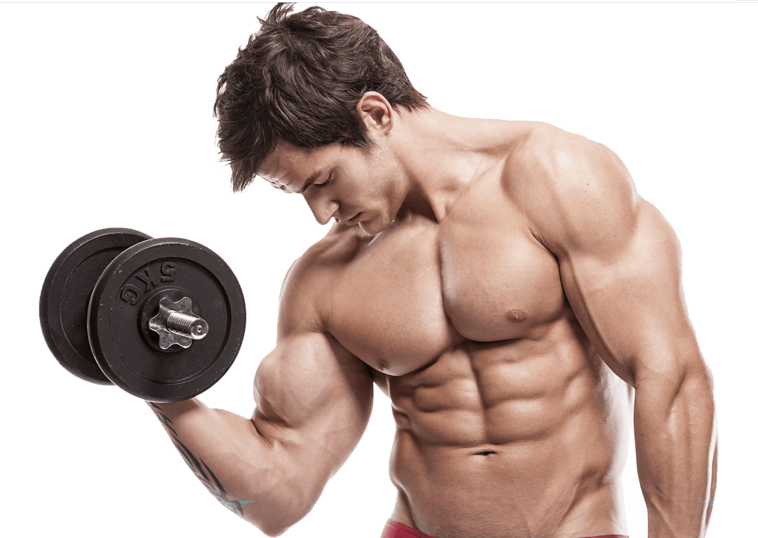 Weight Lifting Png Hd - Bodybuilding,Muscle,Bodybuilder,Physical fitness,Weights,Chest,Arm ...