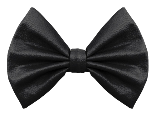 Png Of Bow - Bow Tie PNG Transparent Image - PngPix