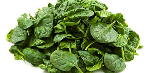 Food Png Spinach - Brain Food: Spinach, the Leaf of Champions | Chile Underground