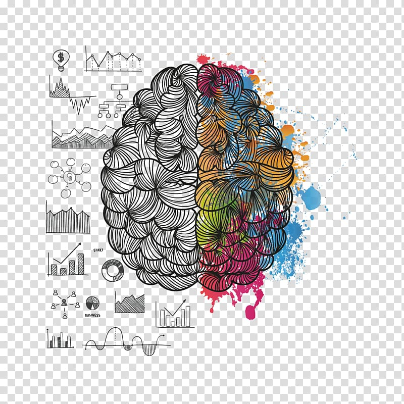 Lateralization Of Brain Function Png - Brain illustration, T-shirt About Your Brain Lateralization of ...