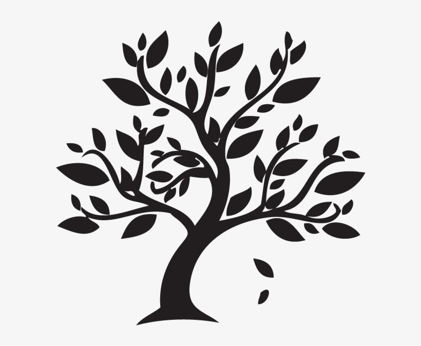 Png Black And White Tree And Leaves Free Black And White Tree And