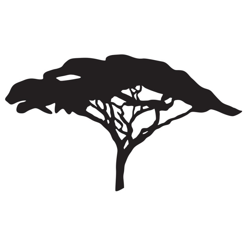 Lion King Tree Silhouette Png Free Lion King Tree Silhouette Png Transparent Images 111338 Pngio