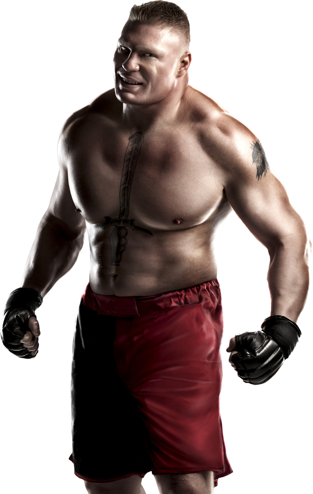 Brock Lesnar Hd Png - Brock Lesnar png HD | Hyp3r World